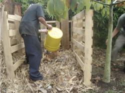 Compost con hojas secas