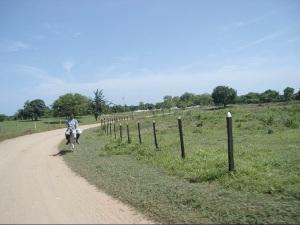 Carretera, al fondo el cementerio y a los lados tierras usadas para la ganadería.